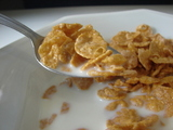 Man finds dead, mummified bat in cereal - Odd News - Digital Spy